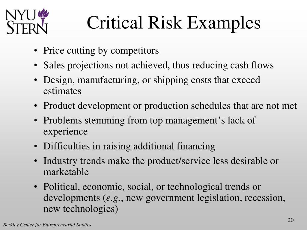 Critical Risk Examples