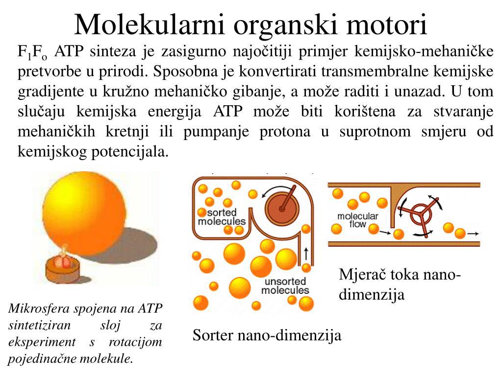 Molekularni organski motori