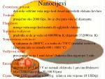 nanocijevi14