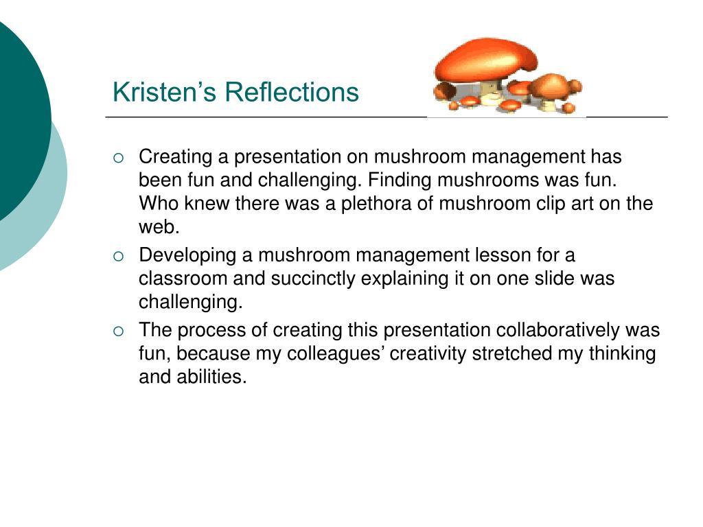 Kristen's Reflections