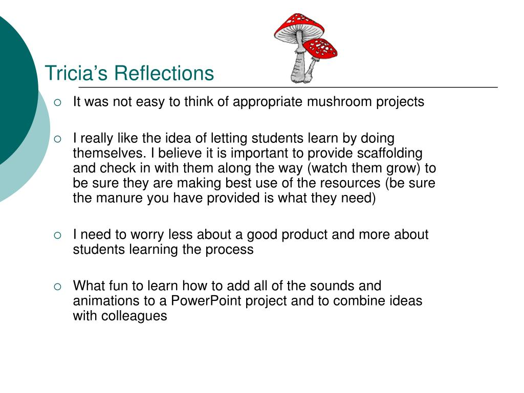 Tricia's Reflections