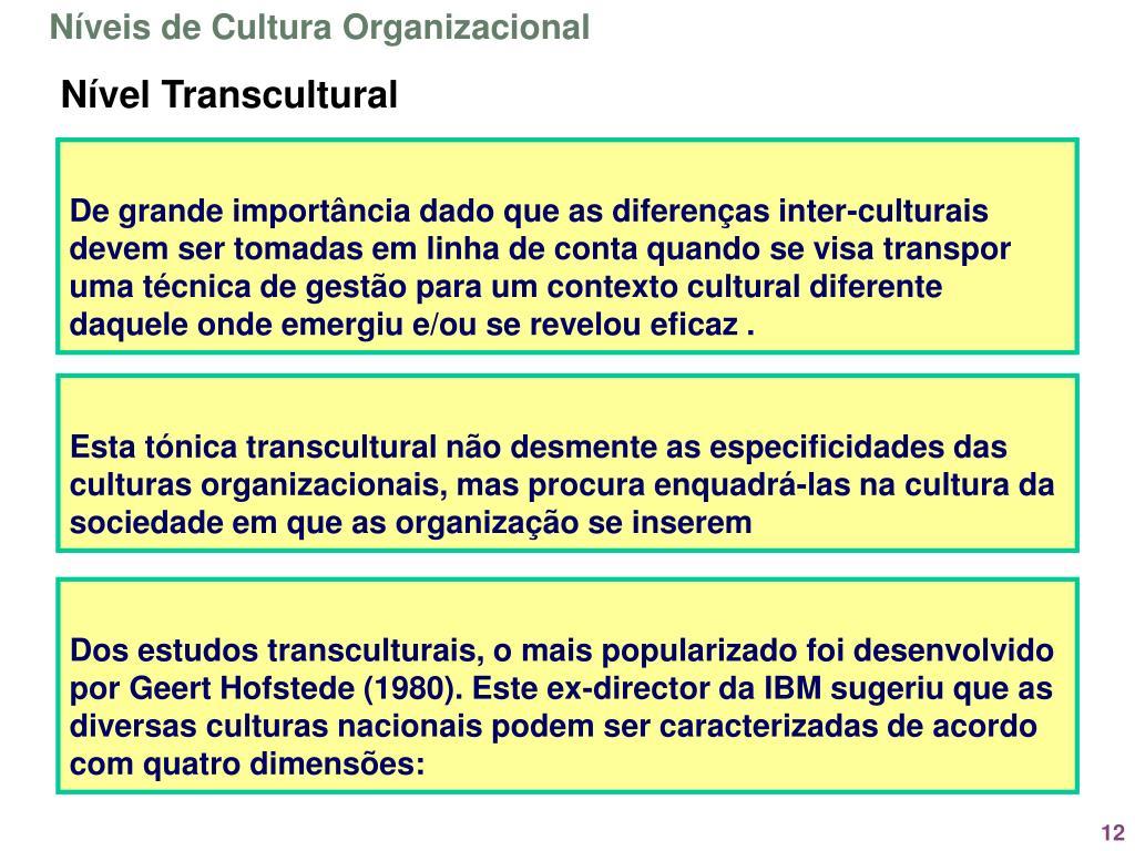 Níveis de Cultura Organizacional
