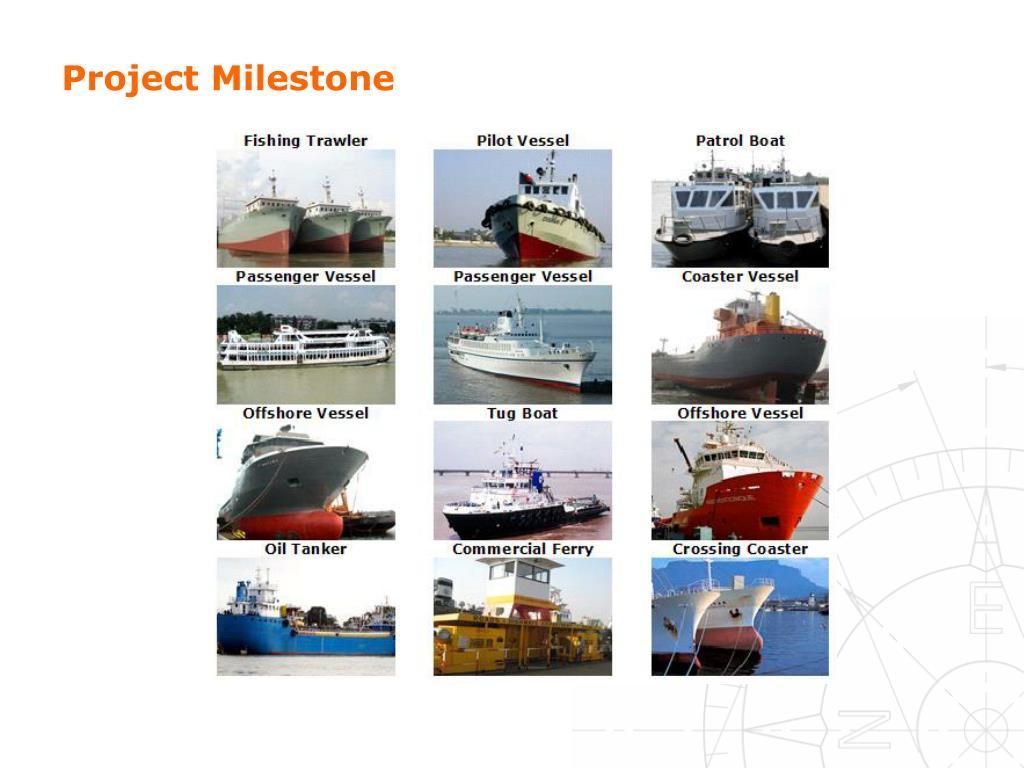 Project Milestone