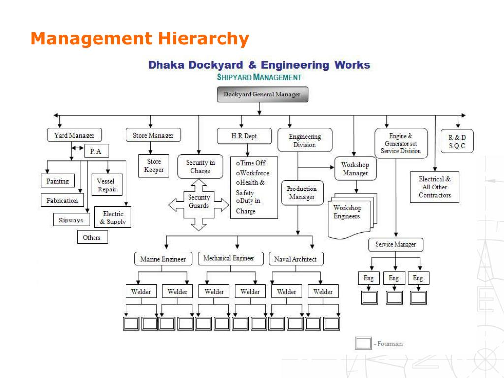 Management Hierarchy