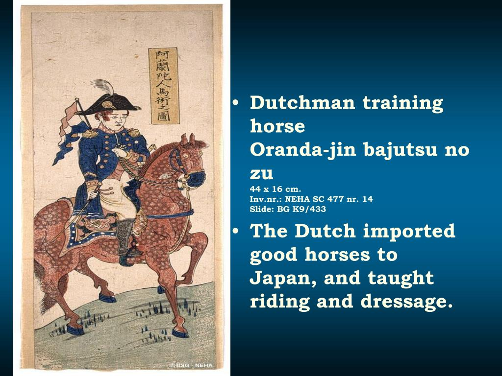 Dutchman training horse