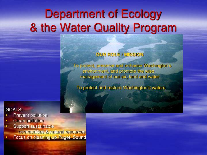 Department of ecology the water quality program