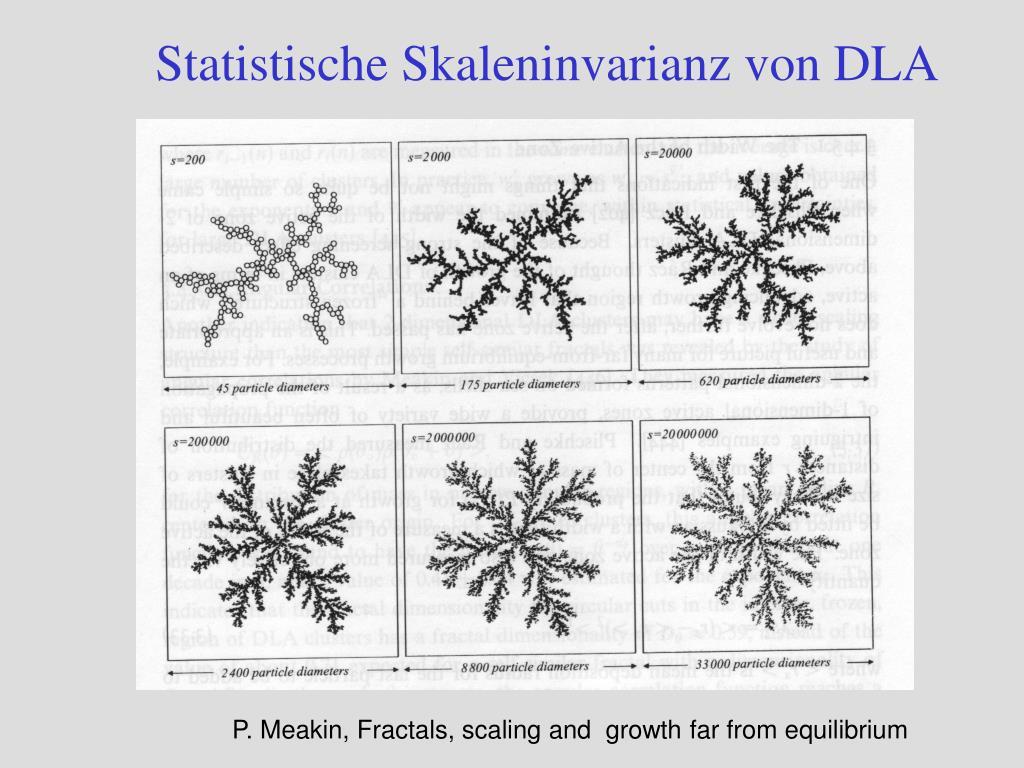 Statistische Skaleninvarianz von DLA