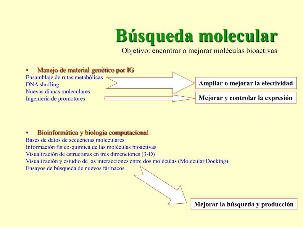 Búsqueda molecular