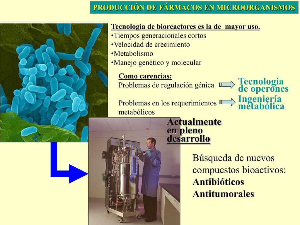 PRODUCCIÓN DE FÁRMACOS EN MICROORGANISMOS