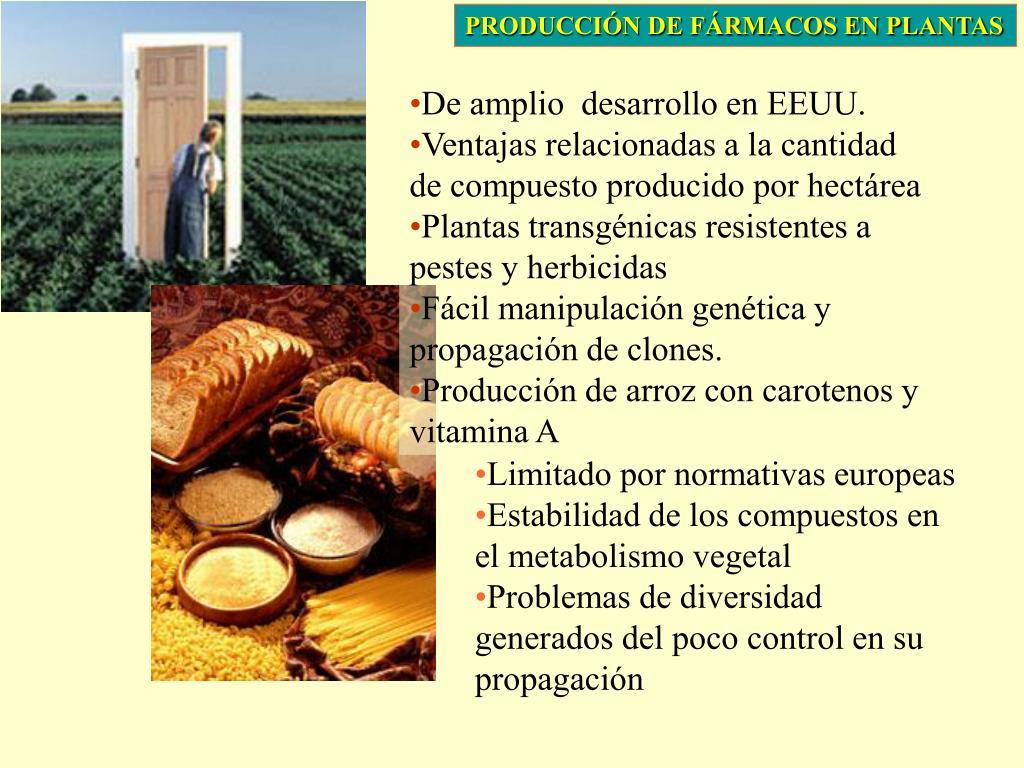 PRODUCCIÓN DE FÁRMACOS EN PLANTAS