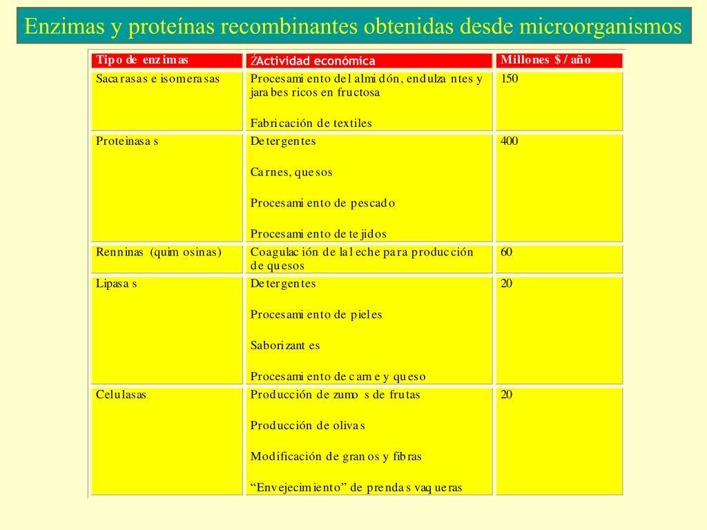 Enzimas y proteínas recombinantes obtenidas desde microorganismos