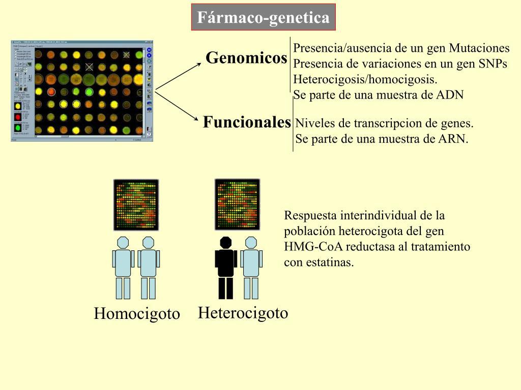 Fármaco-genetica