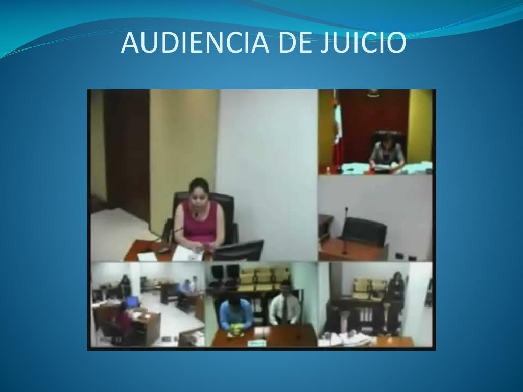 AUDIENCIA DE JUICIO