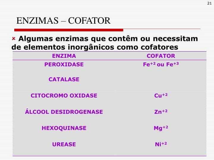 ENZIMAS – COFATOR