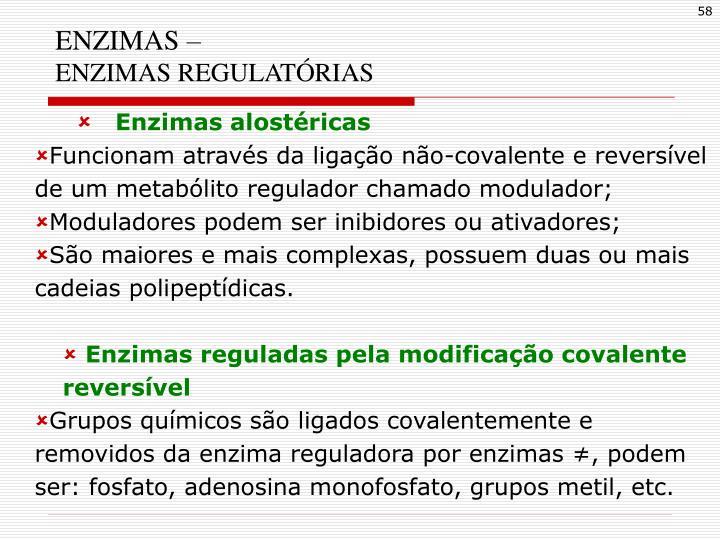 ENZIMAS –