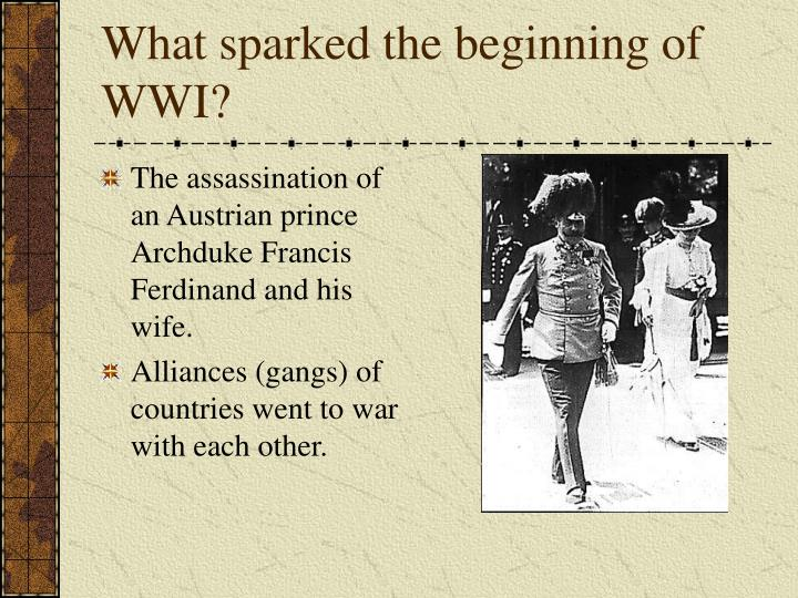 What sparked the beginning of wwi