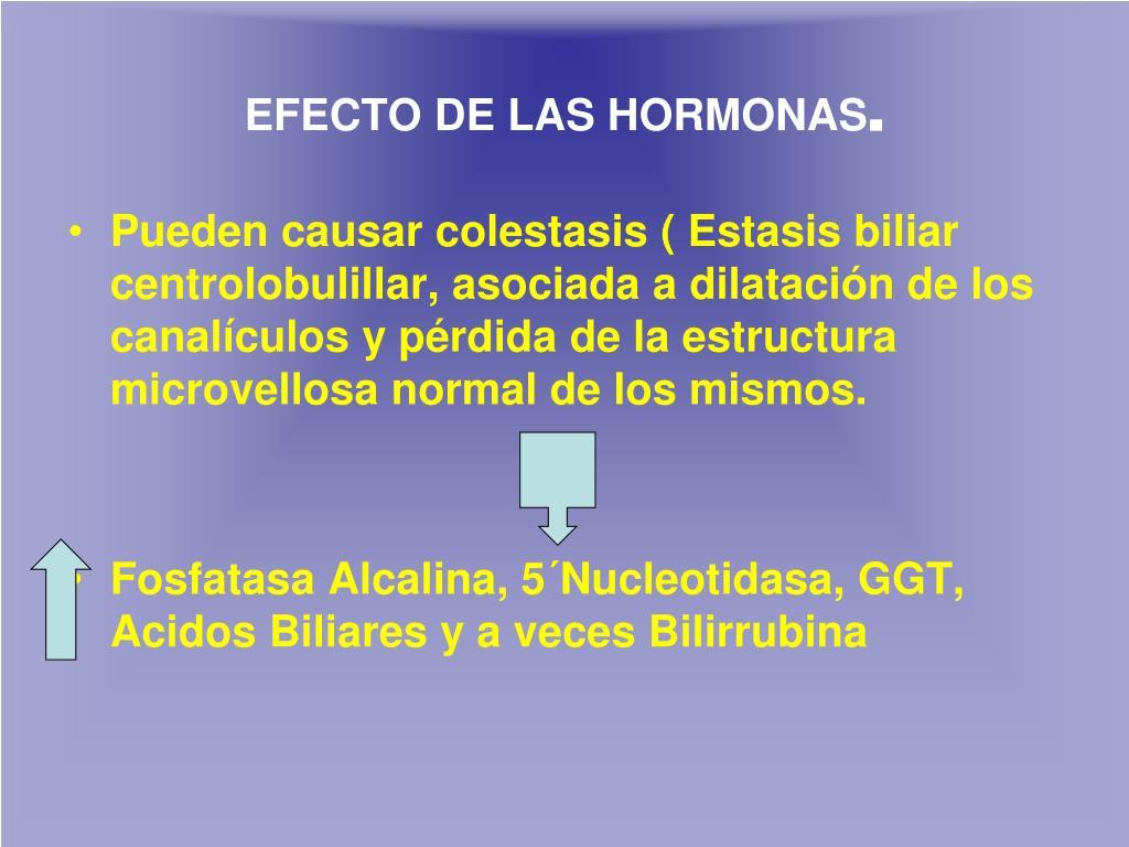 EFECTO DE LAS HORMONAS