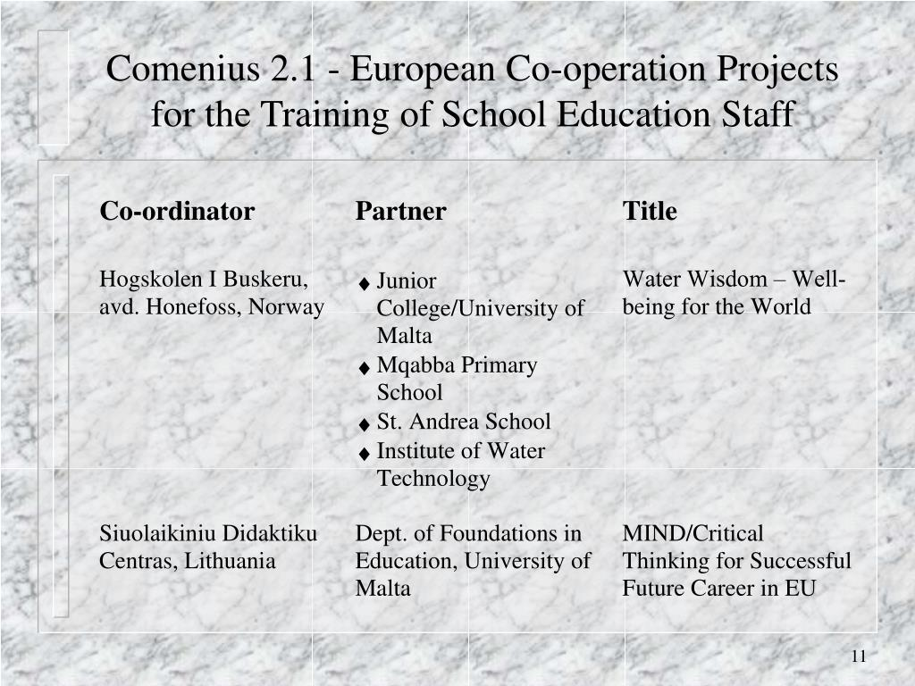 Comenius 2.1 - European Co-operation Projects for the Training of School Education Staff