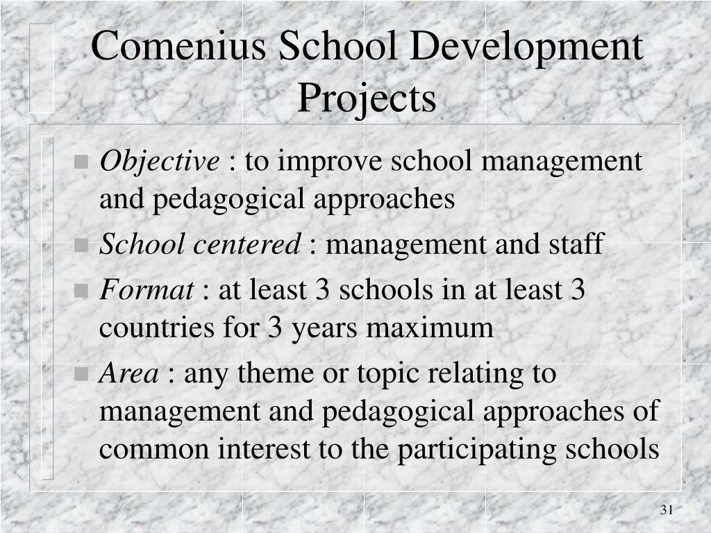Comenius School Development Projects