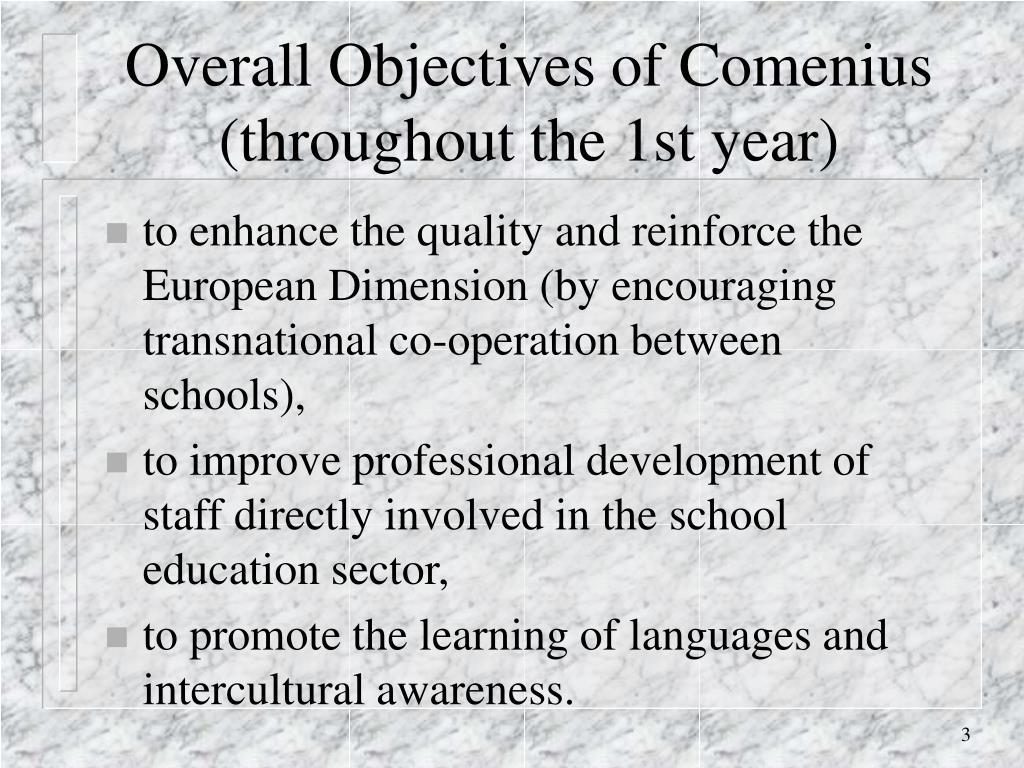 Overall Objectives of Comenius (throughout the 1st year)