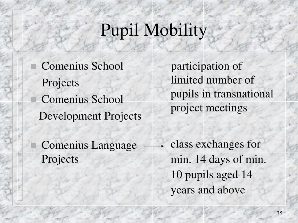 Comenius School