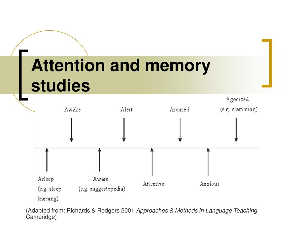 Attention and memory studies