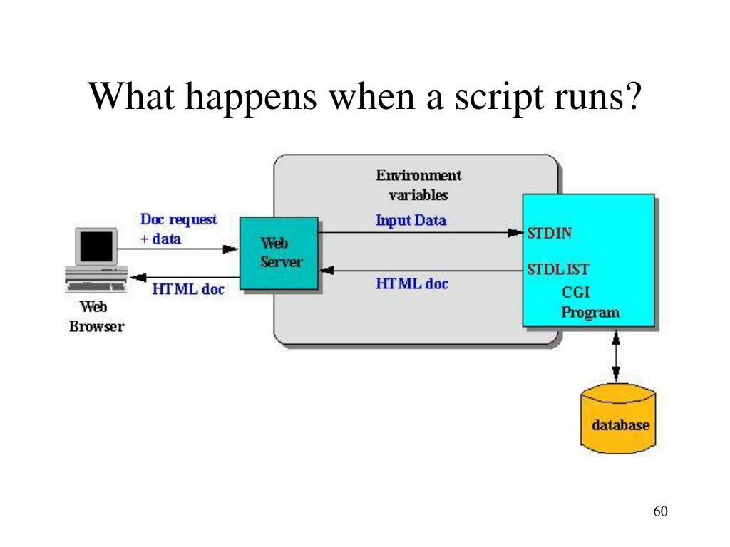 What happens when a script runs?