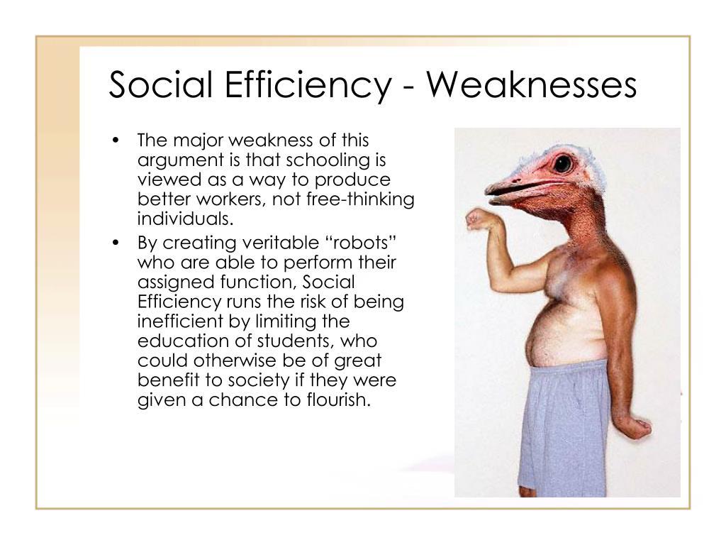 Social Efficiency - Weaknesses