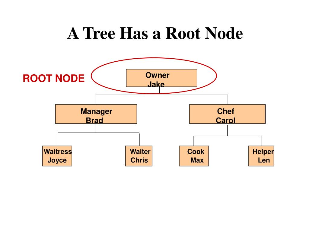 A Tree Has a Root Node