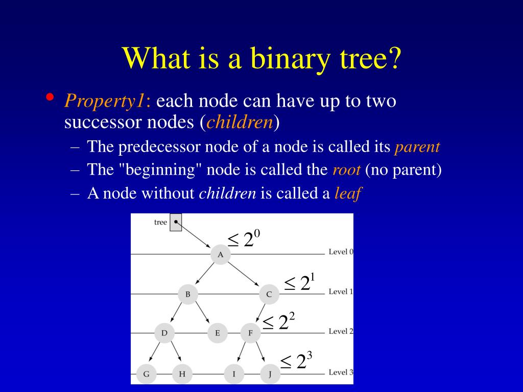 What is a binary tree?