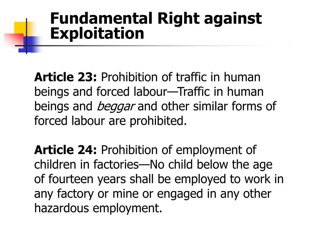 Article 23: