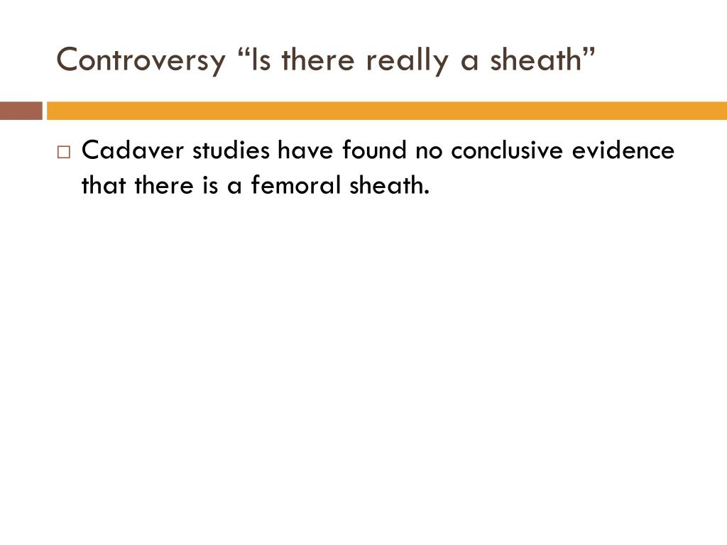 "Controversy ""Is there really a sheath"""