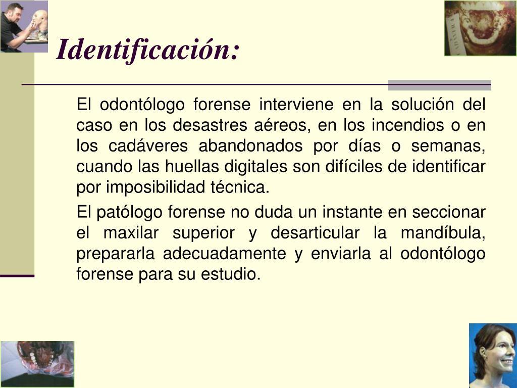 Identificación: