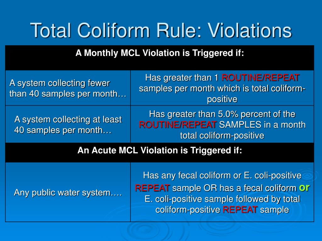 Total Coliform Rule: Violations