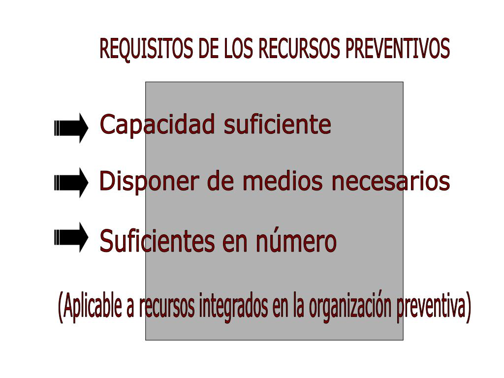 REQUISITOS DE LOS RECURSOS PREVENTIVOS