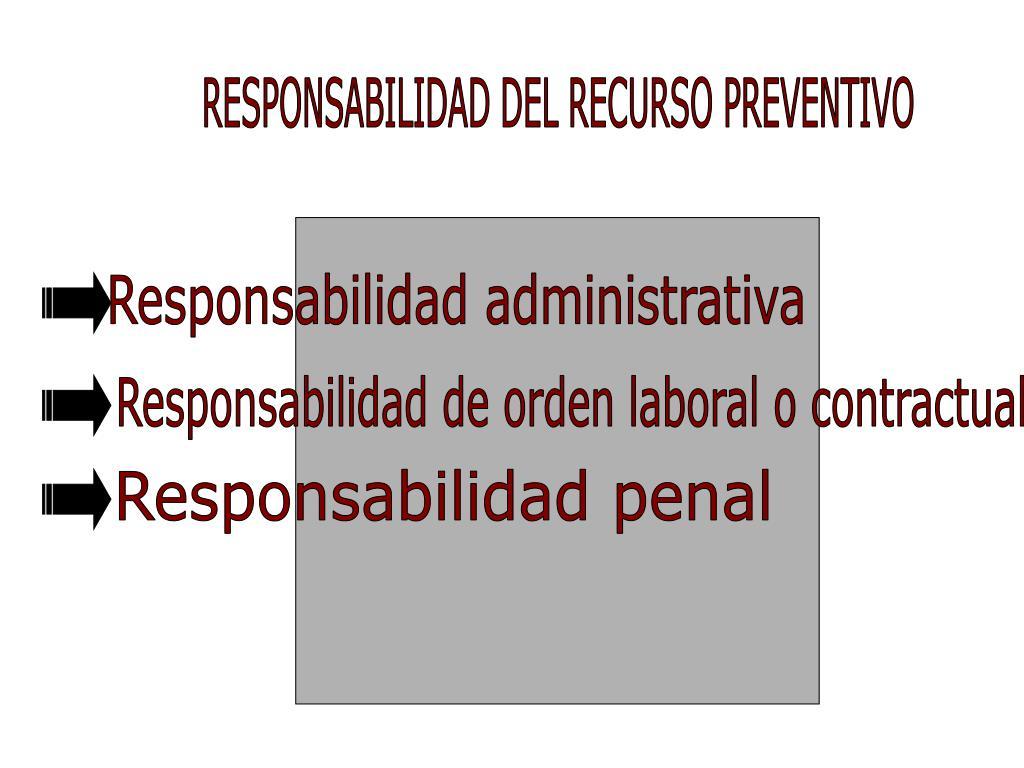 RESPONSABILIDAD DEL RECURSO PREVENTIVO
