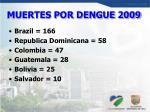 muertes por dengue 2009