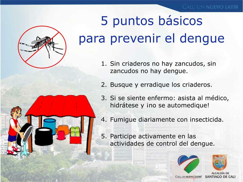 5 puntos básicos