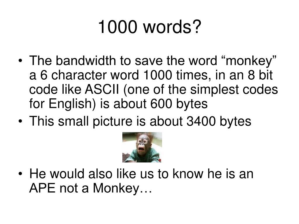 1000 words?