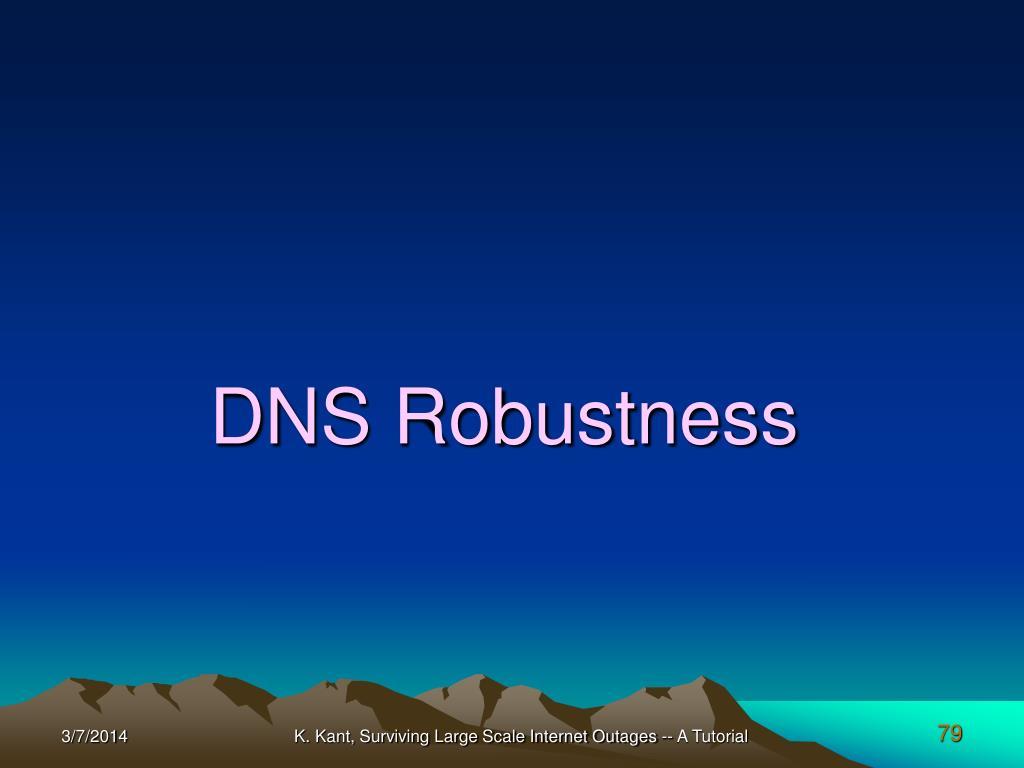 DNS Robustness