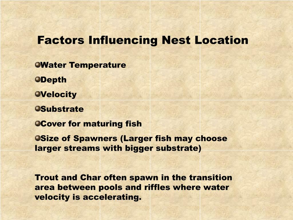 Factors Influencing Nest Location