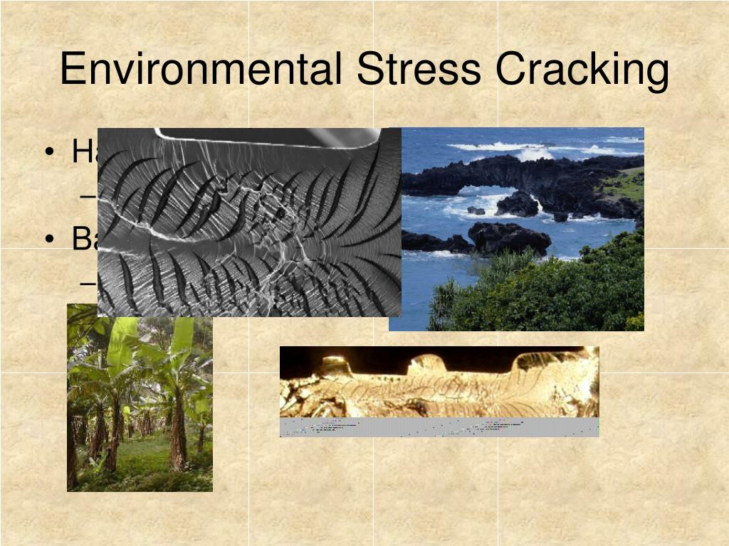 Environmental Stress Cracking