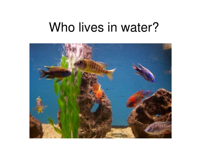 Who lives in water