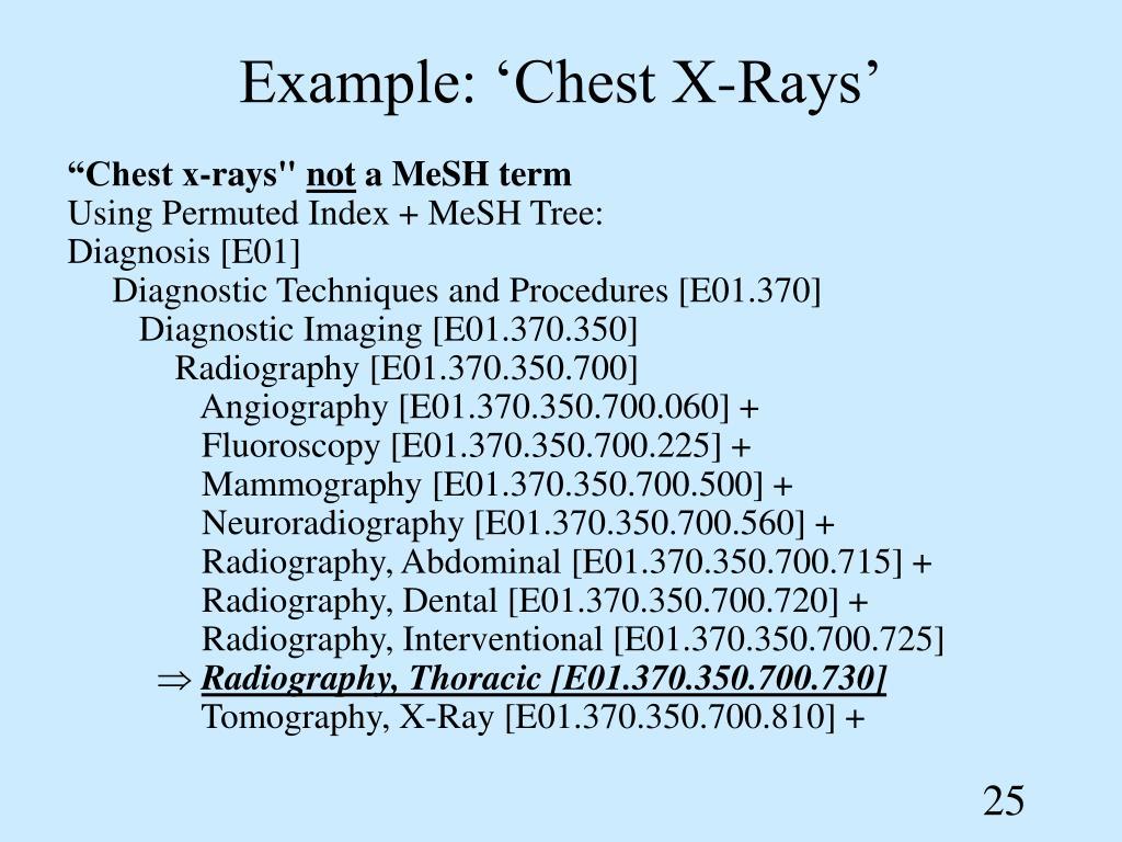 Example: 'Chest X-Rays'