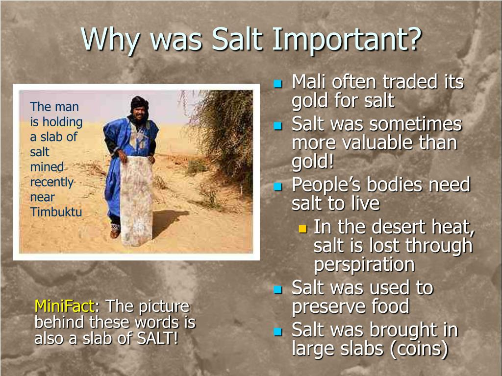 Why was Salt Important?
