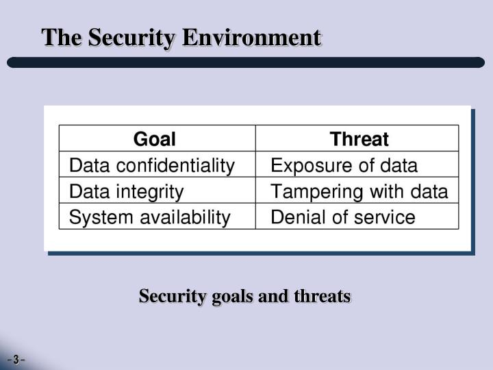 The security environment