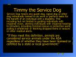 timmy the service dog