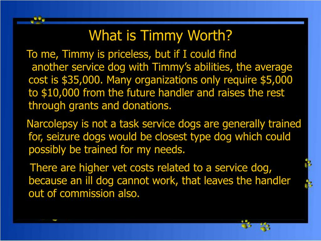 What is Timmy Worth?