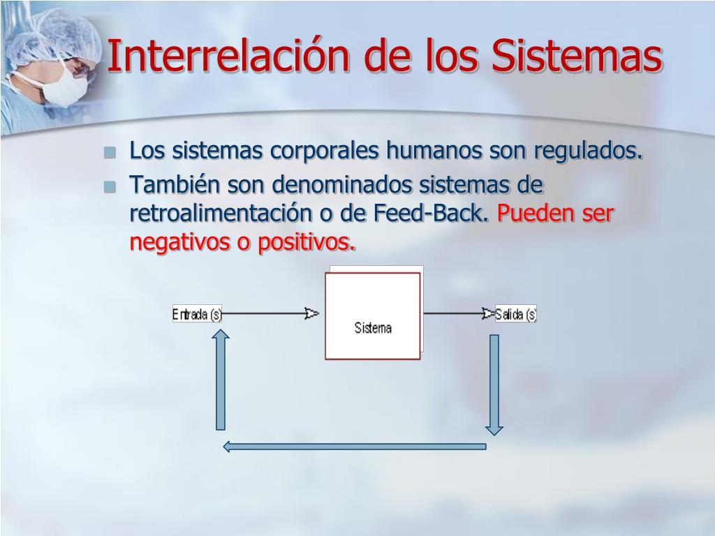 Interrelación de los Sistemas