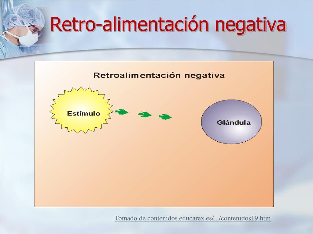 Retro-alimentación negativa